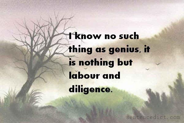 Good sentence's beautiful picture_I know no such thing as genius, it is nothing but labour and diligence.