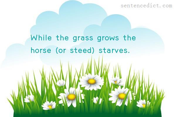 Good sentence's beautiful picture_While the grass grows the horse (or steed) starves.