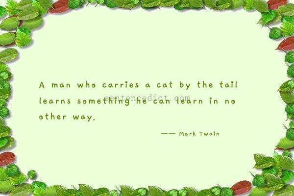 Good sentence's beautiful picture_A man who carries a cat by the tail learns something he can learn in no other way.