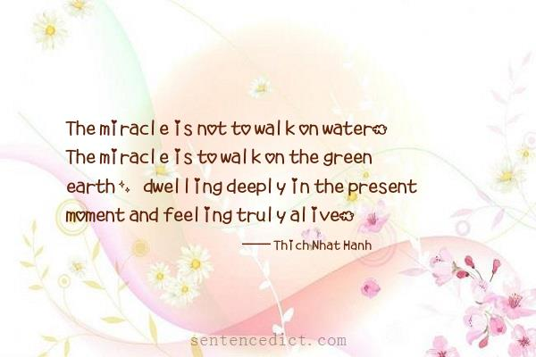 Good sentence's beautiful picture_The miracle is not to walk on water. The miracle is to walk on the green earth, dwelling deeply in the present moment and feeling truly alive.