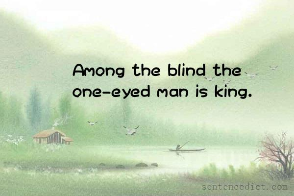 Good Sentence appreciation - Among the blind the one-eyed